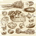Vegetables. Basket with onions. Hand drawn set. Royalty Free Stock Photo