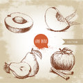Hand drawn sketch style fruits set. Apricot, peach quarter with leafs, whole pear and half, apple with cinnamon.