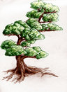 Hand drawn tree Royalty Free Stock Photo