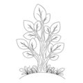 Hand drawn tree Royalty Free Stock Images