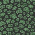 Hand drawn vector green succulents seamless pattern on black background. Floral design. Royalty Free Stock Photo