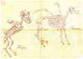An hand drawn vector: Harpy, Pegasus Royalty Free Stock Photo