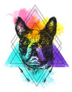 Hand drawn vector illustration bulldog. Sketch style dog.