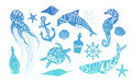 Hand drawn vector illustration - Marine kit. Design elements Royalty Free Stock Photo