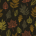 Hand drawn vector illustration. Seamless pattern with fall leaves Royalty Free Stock Photo