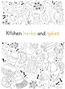 Hand drawn vector illustration of various kitchen herbs and spices doodles elements you can find full drawing elements under white Stock Images