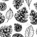 Hand drawn vector illustrations seamless pattern with with pine cones and leaves forest background Royalty Free Stock Photography