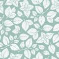 Hand drawn vector seamless pattern with mint leaves