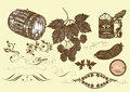 Hand drawn vector set beer and  brew beer elements Royalty Free Stock Photo