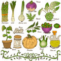 Hand drawn vegetable set 5 Royalty Free Stock Images
