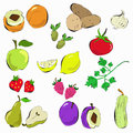 Hand drawn vegetables and fruit vector illustration of various Stock Photo