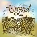 Hand drawn vineyard landscape. Vintage vector illustration. Backdrop created with gradient mesh.