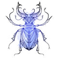 Hand drawn vintage stag beetle Royalty Free Stock Photo