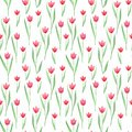 Seamless floral pattern in pink, green, red colors. Tulips.