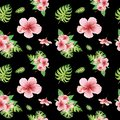 Watercolor floral tropical seamless pattern with green monstera leaves and pink hibiscus flowers on black