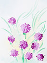 Hand drawn watercolor illustration of beautiful wild purple flowers with warm yellow light Stock Photos