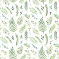 Hand drawn watercolor illustration. Botanical background with gr