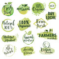 Hand drawn watercolor labels and badges for organic food
