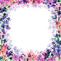 Hand drawn watercolor square frame with meadow small pink, blue and violet flowers and translucent flower layer on white