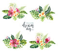 Hand drawn watercolor tropical flower bouquets. Exotic palm leaves, jungle tree, brazil tropic botany elements and