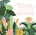 Hand drawn wild tropical house plants. Scandinavian style vector illustration, home decor.