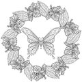 Hand drawn zentangle Butterfly in wreath of Hibiskus flower for Royalty Free Stock Photo
