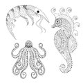 Hand drawn zentangle Shrimp, Sea Horse, Octopus for adult anti s