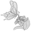 Hand drawn zentangle tribal flying Butterfly and Hibiskus flower Royalty Free Stock Photo