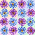 Hand drawn zinnia seamless pattern gentle with flowers Royalty Free Stock Image