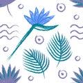 Hand drown gentle summer strelitzia pattern