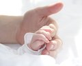 Hand of father and tiny hand of baby Royalty Free Stock Photo