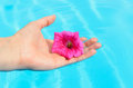 Hand and flower Royalty Free Stock Images