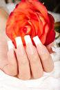 Hand with long artificial french manicured nails and lily flowers