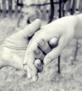 Hand of friendship in black and white Royalty Free Stock Image