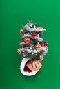Hand giving you small christmas tree offering a through a hole in green cardboard sheet Royalty Free Stock Images