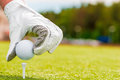 Hand in a glove and golf ball macro shooting Stock Images