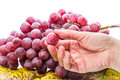 Hand with a grape Royalty Free Stock Image
