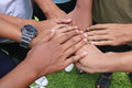Hand harmonious teamwork in the grassy park Royalty Free Stock Images