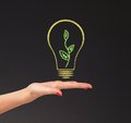 Hand hold bright light bulb with board Royalty Free Stock Photo