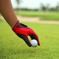 Hand hold golf ball with green grass Stock Images