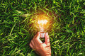 hand hold light bulb on grass with sunset power energy concept Royalty Free Stock Photo