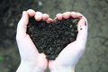 Hand holding black soil in the form of heart on background Royalty Free Stock Photos
