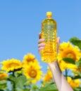 Hand holding bottle of sunflower oil