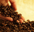 Hand holding coffee beans Royalty Free Stock Photography