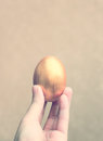 Hand holding easter egg with retro filter