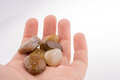 Hand  holding a few pebbles Royalty Free Stock Photo