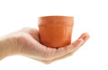 Hand holding a flower pot isolated on white background Stock Photography