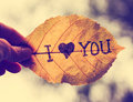 A hand holding a leaf that reads i love you Royalty Free Stock Photo