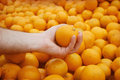 Hand holding orange Royalty Free Stock Images