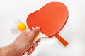 Hand holding ping pong racket Stock Photos